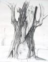 Der tote Baum, Wachskreide mit Tusche laviert, 50 x 70 cm, 1989