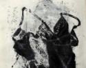 von u. (detail) serie von 10 materialdrucken auf nessel 70 x 100 cm