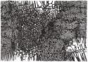 ohne Titel / 29,7 x 42,0 cm / Pigmentstift auf Karton